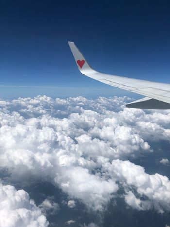 もくもくの上(^O^)♪ Skymark Airlines Skymark Sky Cloud - Sky Flying Blue Nature Day Airplane