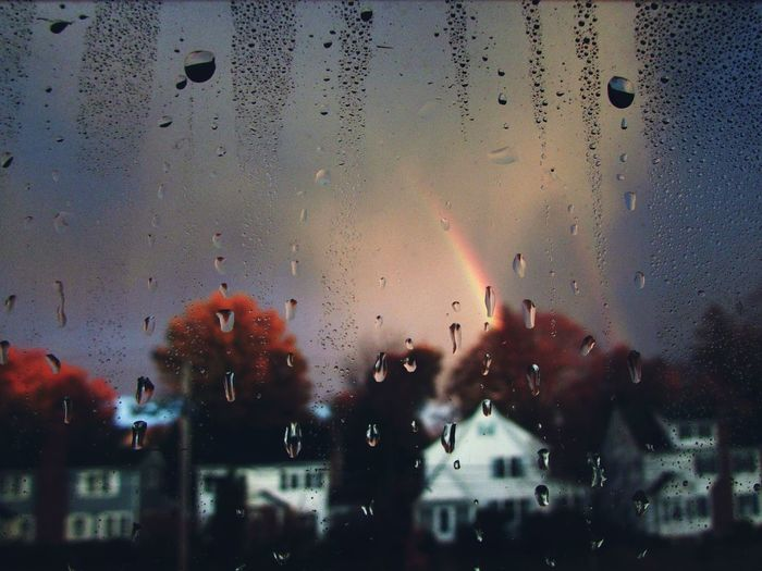 Rainy Season Raining Rainy Raining Day RainyDay Rainy Days☔ Rain Drops Raindrops Rainy Days Rain Water Droplets Waterdrops Dewdrops_Beauty Dewdrops Dew Drops Dew Backgrounds Close-up No People Condensation Window Drop Indoors  Rainbow Rainbow Colors Inner Power The Great Outdoors - 2018 EyeEm Awards