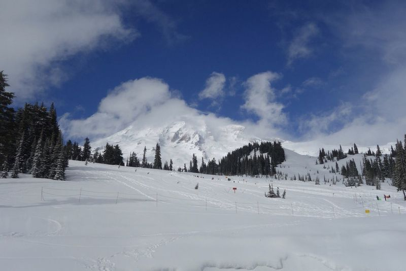 Nature Photography Winter Nationalpark Snow Mt. Rainier Great Views Wintertime My View