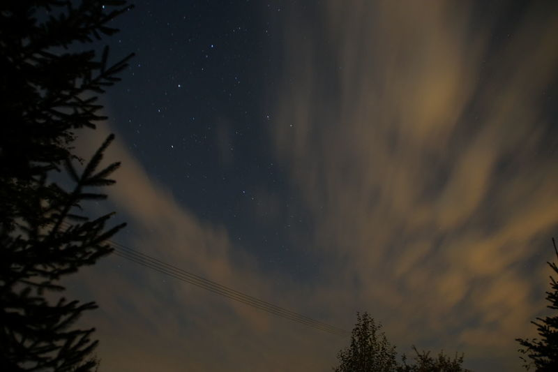 Astronomy Atmosphere Atmospheric Mood Beauty In Nature Cloud - Sky Dramatic Sky High Section Low Angle View Nature Night No People Non-urban Scene Silhouette Sky Star Field Tree