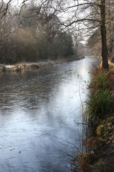Beauty In Nature Canal Day Frozen Canal Grass Growth Ice Nature No People Outdoors Reflection Scenics Surrey Countryside Towpath Tranquil Scene Tree Walking Water Winter