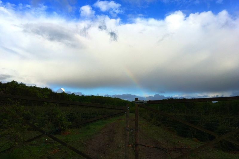 Rainbow The Great Outdoors - 2016 EyeEm Awards Tadaa Community Tadaa Nature Nature_collection Sky And Clouds Sky Clouds And Sky IPhone SE