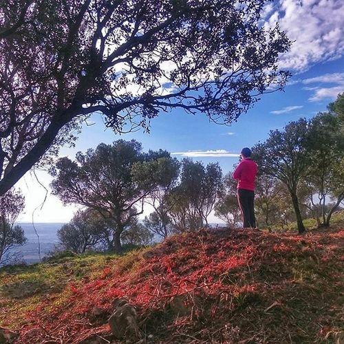 Bondia Igersbalears Tardor Natura Muntanya incamallorca puigsantamagdelena igers Mallorca