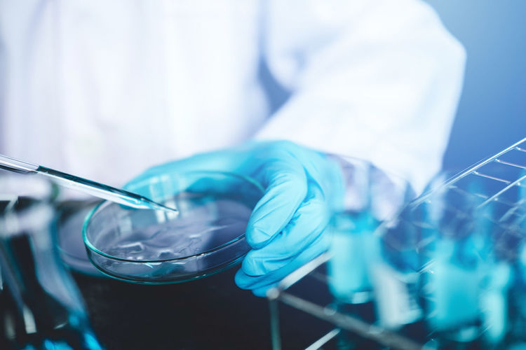 Close-up of scientist working in laboratory