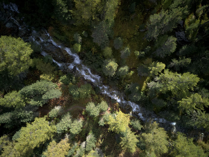 Drone  Aerial Photography Beauty In Nature Birdseyeview Day Dronephotography Forest Freshness Green Color Growth Lush Foliage Nature No People Outdoors River Scenics Tree Water Waterfall