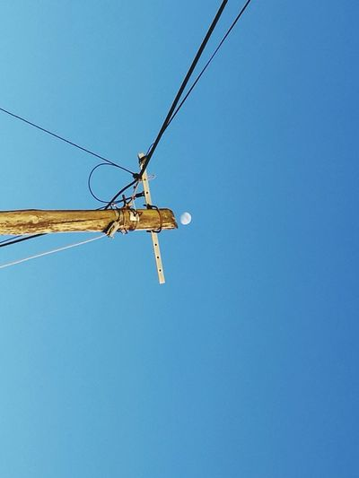Close-up Clear Sky One Animal No People Sky Outdoors Day Moon Moon Surface Moonrise Moonphotography Moon_lovers Welcome To Black Sky And Clouds Honor 8 Vila Do Conde Long Goodbye Nature Buildings Neon Sign Business Finance And Industry Lamp Post Powerline Phoneline Welcome To Black