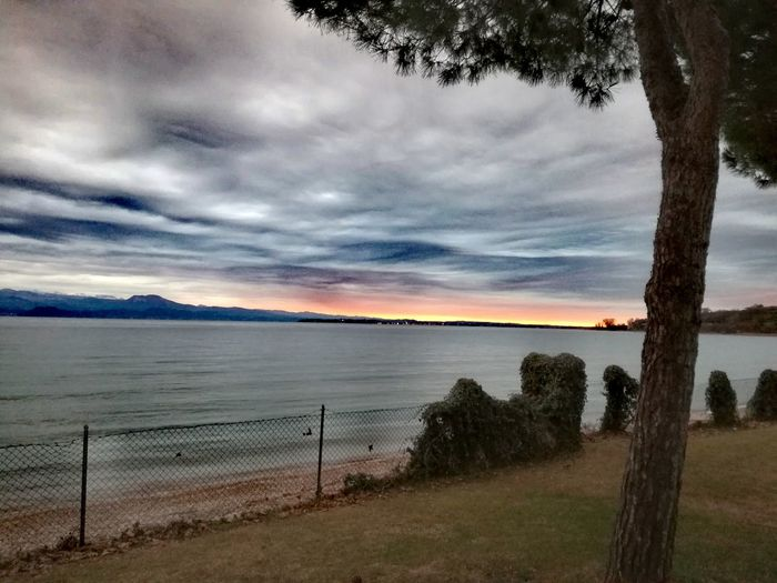 Workingweekend Amazing View Cold Nature Photography 2017 Wintersky Beaytifulview Reallycold Gardalake Italy Peace And Quiet Water Tranquility Nature Sea Sky Cloud - Sky Beauty In Nature Tranquil Scene No People Outdoors Tree