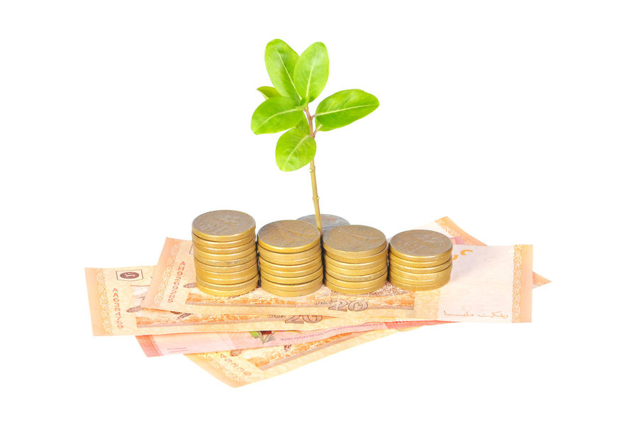 money and sprouting plant for profitable saving concept Banking Budget Business Close-up Coins Currency Donation Expenses Finance Finance And Economy Gold Golden Gst Investment Money Office Paper Currency Pension Profit Reputation Retirement Saving Stack Tax Taxes