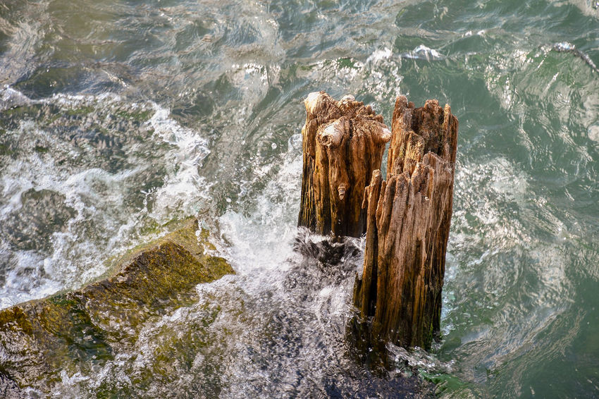 Details of old wooden posts in the water of a lake Water Motion Sea No People Nature Wood - Material High Angle View Day Rock Splashing Beauty In Nature Scenics - Nature Rock - Object Outdoors Wave Solid Wooden Post Breaking Power In Nature Flowing Water Lake Old Ruined Details Textures and Surfaces