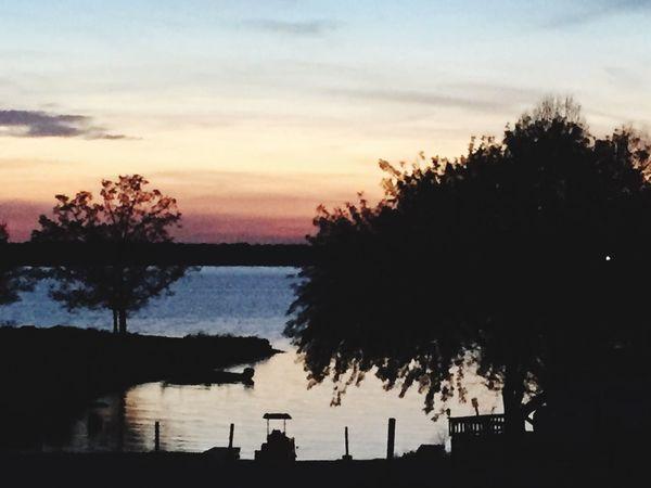 Sky Tree Silhouette Sunset Water Plant Cloud - Sky
