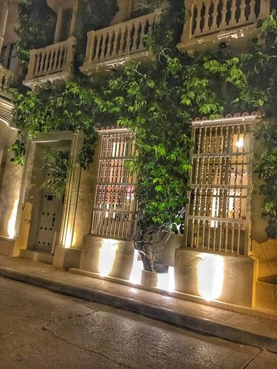 Architecture Illuminated Night Built Structure Building Exterior Outdoors No People City