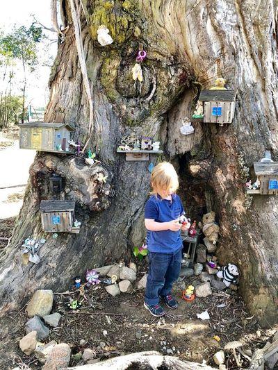 Hello World Enjoying Life Taking Photos Hanging Out Beaty nature Child tree mistery toys life story