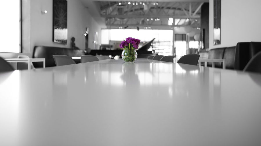 Black And White Long Table Low Angel View Low Angle View Natural Light One Color Purple Flower Reflection Shiny Table