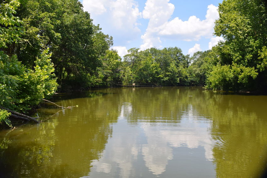 Alabama Outdoors Beauty In Nature Boating Fishing Getting Away From It All Outdoor Alabama Outdoors Reflection Scenics Sky Summer Swimming Tranquility Tree Water Alabama Nature Creekside River Collection River Fun Outdoor Photography Scenic