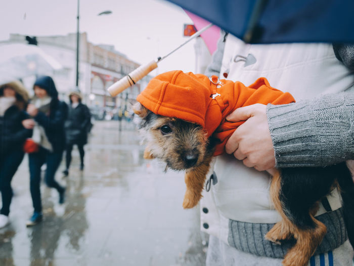 The Street Photographer - 2018 EyeEm Awards The Traveler - 2018 EyeEm Awards LONDON❤ Pets Dog Doggy London EyeEm Best Shots EyeEm EyeEm Nature Lover Streetphotography London Rain Rainy Days Clothing Day Domestic Domestic Animals Focus On Foreground Holding Incidental People Lifestyles Mammal Midsection One Animal One Person Pet Owner Pets Real People Warm Clothing