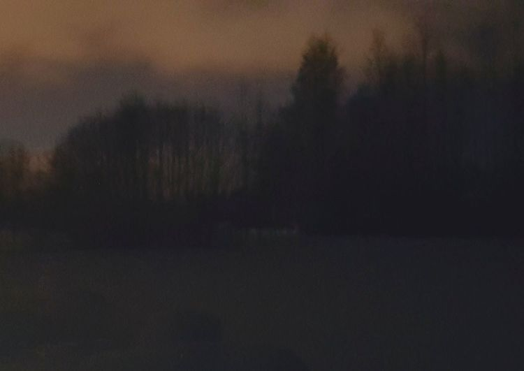 Impressionism Imagination Diffuse Silence Of Nature Magic Dawn Magic Hour Ångermanland No People Silhouette Outdoors Night Landscape Dawn Nature Tree Sky