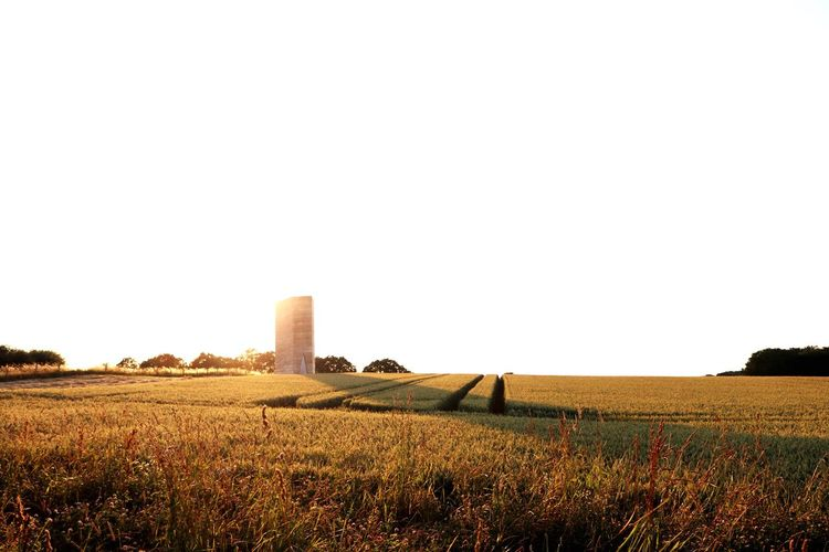 Betterlandscapes Kapelle Architecture EyeEm Selects Sky Landscape Field Agriculture Built Structure Land Nature Beauty In Nature