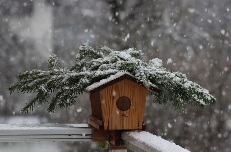 Birdhouse at balcony during snowfall