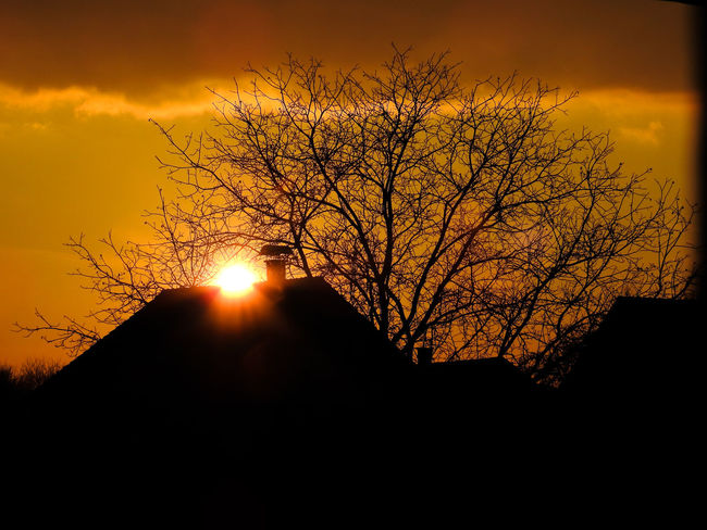 Winter Architecture Bare Tree EyeEmNewHere Building Exterior Built Structure Clouds And Sky Day Nature No People Orange Color Outdoors Scenics Silhouette Sky Sun Sunset Tree