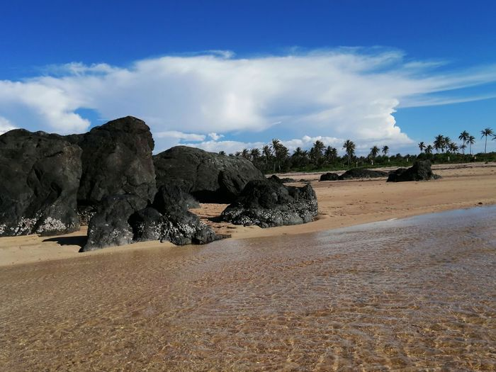 Low Tide Coconut Palm Tree Coconut Trees Sand Sand Dune Tree Sky Cloud - Sky Shore Horizon Over Water Rock Formation Rock Ocean Coast Rocky Coastline Arid Climate