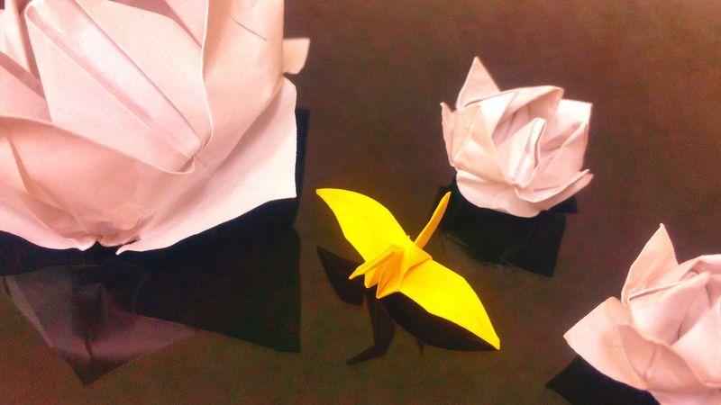 折り紙 Origami 蓮 Lotus 折り鶴 Folded Paper Crane Hello World Flower Iphonegallery EyeEm Gallery Japan Japanese  Enjoying Life Peace Hope