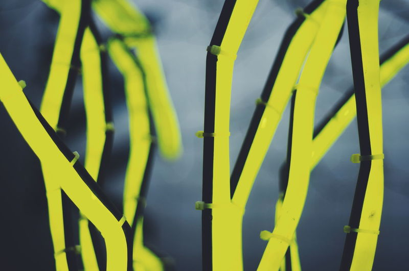 Finsbury Square art Yellow Art Neon Green Color Close-up No People Complexity Outdoors Nature Day The Graphic City