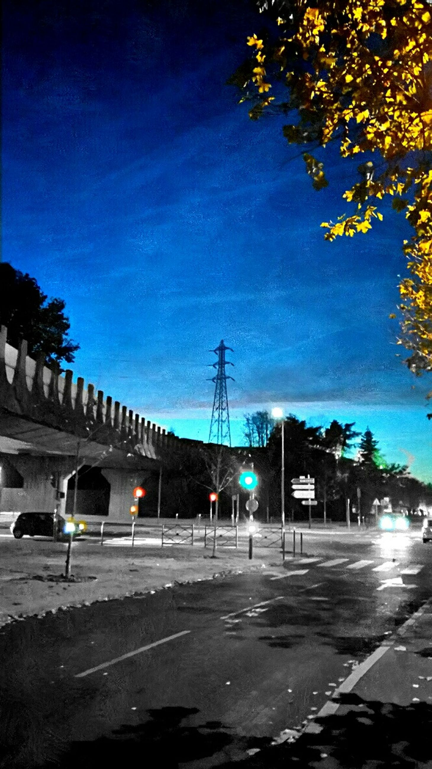 built structure, tree, street light, building exterior, road, architecture, street, transportation, sky, car, city, lighting equipment, the way forward, illuminated, blue, sunlight, outdoors, road marking, low angle view, no people
