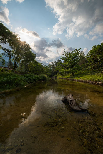Kiriwong Village, Lan Saka District, Nakhon Si Thammarat Province, Thailand Holiday Beauty In Nature Best  Cloud - Sky Day Forest Grass Growth Hot Spring Idyllic Kiriwong Lake Landscape Nature Outdoors Oxygen River Scenics Sky Tranquil Scene Tranquility Tree Variation Village Water
