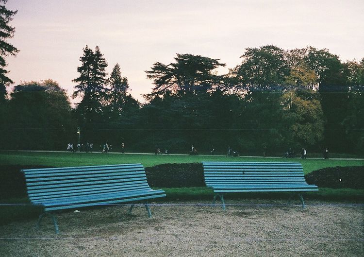 Rollei35led Analog Analog Photography Analogue Photography Rennes Park Benches Solitude