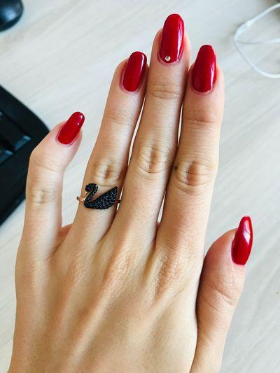 Manicure Nail Human Body Part Nail Polish Body Part Red Fashion Women Human Hand Human Finger Close-up Fingernail Red Nail Polish Beauty International Women's Day 2019