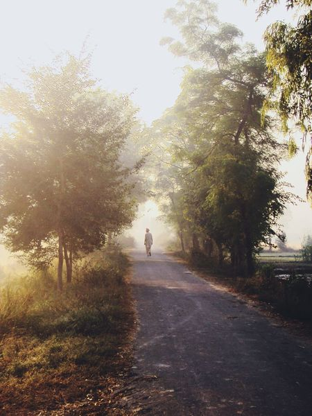 alone Narrow Road Village Punjab India Tree Road One Person Nature Full Length The Way Forward Outdoors Day Beauty In Nature Sky People EyeEmNewHere EyeEm Ready   Shades Of Winter Summer Exploratorium Focus On The Story