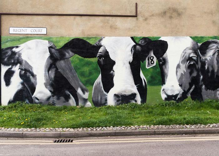 Mural near Reading Cattle Market Wallart Wallpainting Mural Mural Art Reading_uk Berkshire