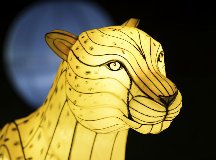 Boernerbotanicalgardens Cheetah China Light Festival Lantern Milwaukee Black Background Close-up Low Angle View Night No People Statue Yellow