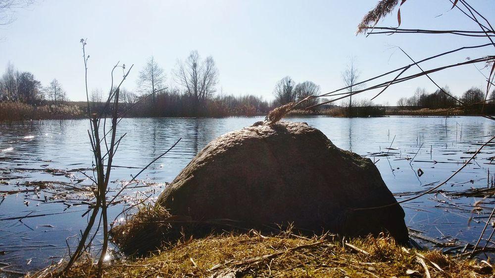 Kamień nad stawem Staw Suwałki Woda Słońce