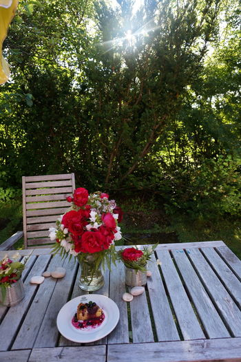blueberry pie Nature Flowers Flower Collection Blueberry Pie Pie Cake Cake Slice Prepared Food Outdoor Chair Strawberry Shining Hooded Beach Chair Fruit Salad Berry Fruit Berry Bench Sunbeam Patio Pancake Streaming Lounge Chair Strawberry Ice Cream Kiwi Blueberry Quilt Pastry Deck Chair