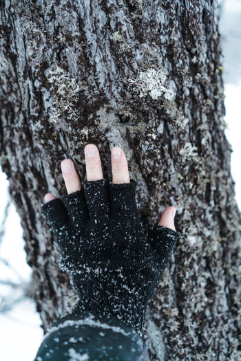 Human hand on tree trunk during winter