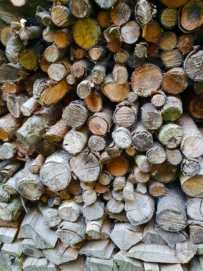 Just wood Heap Centered Perspective In Front Cut Tree Area Tree Art Tree Of Life Wood - Material Wood Art Wooden Texture Backgrounds Forestry Industry Full Frame Stack Woodpile Log Heap Timber Wood - Material Textured  Tree Ring Deforestation Pile Firewood Lumber Industry Environmental Issues Tree Stump Environmental Damage Campfire Fire Pit