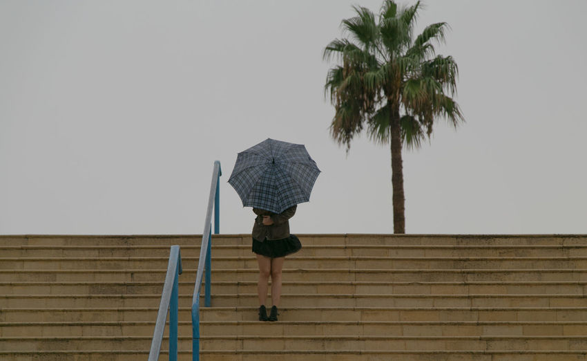 Autumn Palm Tree Rain Rainy Days Architecture Built Structure Day Fall Low Angle View Men One Person Outdoors People Protection Rainy Day Real People Rear View Sky Staircase Steps Steps And Staircases Tree Umbrella Umbrella☂☂