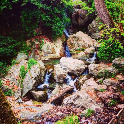 Water Runnel Rock Beauty In Nature Day