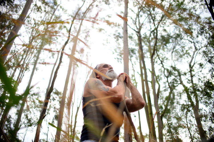 Low angle view of man standing in eucalyptus forest