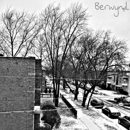 Berwyn Il Winter Overdosedesign ove