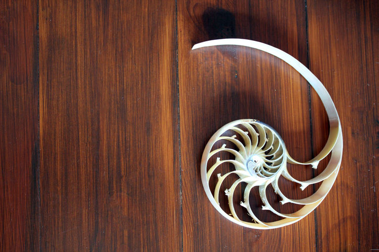 Directly above shot of spiral on wooden table