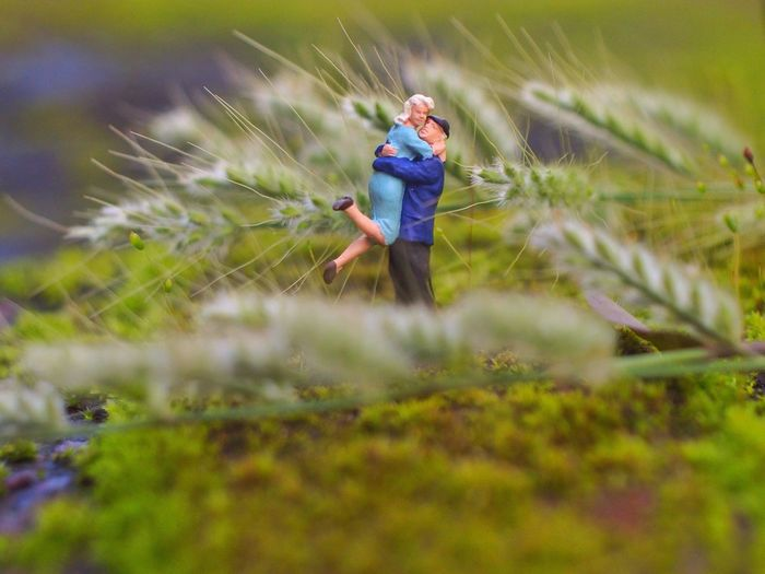 Side view of a figurine couple embracing amid stalks