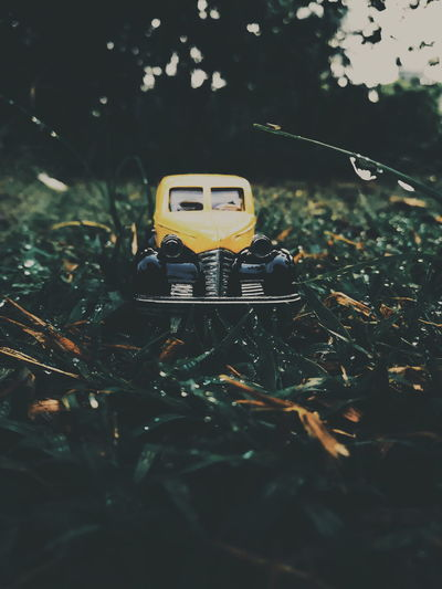Toy car on field