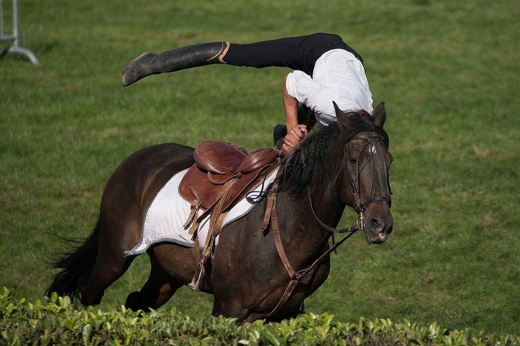 Equitacion  équitation Cheval Horse Caballo Horse Riding Cavalier  Acrobat Acrobatics  Autour De Chez Moi