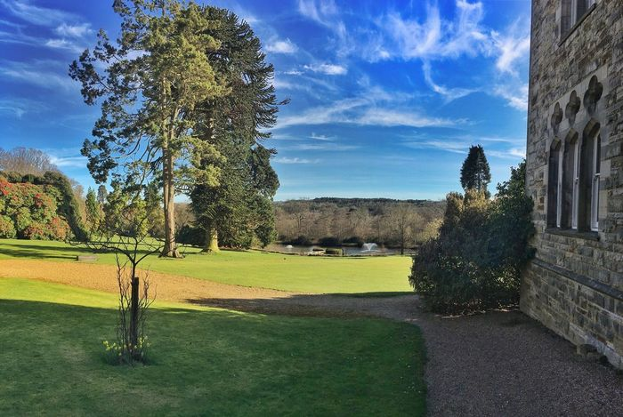 Ashdown Park Hotel, UK Tree Beauty In Nature Nature Green Color Grass Growth Sky No People Golf Golf Course Day Outdoors Green - Golf Course EyeEm Gallery EyeEm Best Shots EyeEm Nature Lover Nature Grass Houses And Windows Manor House Mansion Live For The Story The Great Outdoors - 2017 EyeEm Awards