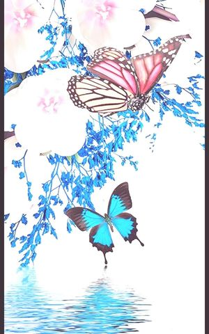 Primavera Butterfly Fioriture Tokyo Lithuania Island Peru EyeEm Foto Poland #brazil
