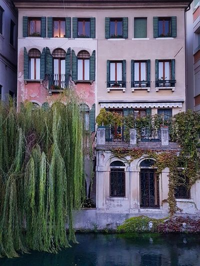 Window Architecture Building Exterior Built Structure Outdoors Façade Water Canals Trees Willows