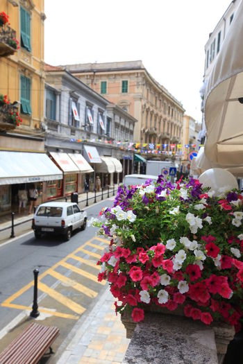 San Remo, Italy San Remo Architecture Building Exterior Built Structure Car City Day Flower Freshness Italy Land Vehicle Mode Of Transport Nature No People Outdoors Road Sky Street Transportation