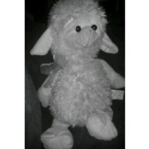 Everyone, say 'Hello' to Shepherd' <3 (: Mysheep Isleepwithit Hehe Imabiglittlegirl haha